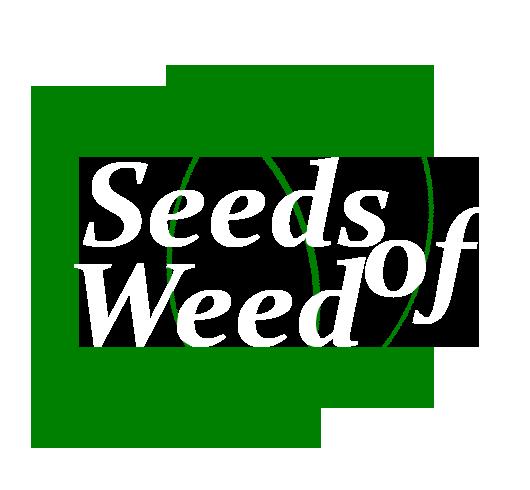 Seeds Of Weed
